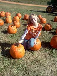 Corn Maze Pumpkin Patch Winston Salem Nc by Patterson Farms Mount Ulla Nc Out Of The House Nc