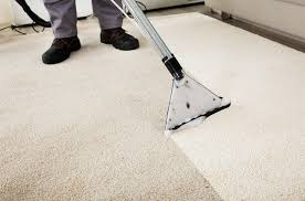 carpet cleaning company professional carpet cleaning