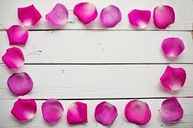 Rose Petals Border Frame Floral Romantic F