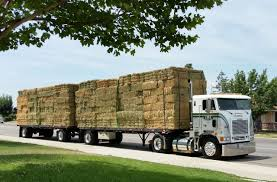 ✿✿coe Freightliner Custom Pullin Doubles Of Hay   American ... Rapid Relief Team Hay From Tasmania To Local Farmers Goulburn Post Trucks Wagon Lorry Rig Tractors Hay Straw Photos Youtube Hay Trucks For Hire Willow Creek Ranch Hauling Bales Hi Res Video 85601 Elk161 4563 Morocco Tinerhir Trucks Loaded With Bales Of Stock Wa Convoy Delivers Muchneed Droughtstricken Nsw Convoy Heavily Transporting Over Shipping And Exporting Staheli West Long Haul As Demand Outstrips Supply The Northern Daily Leader Specialized Trailer On Wheels For Transportation Of Custom And Equipment Favorite Texas Trucking