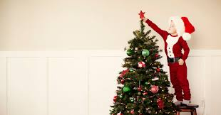 What Is The Best Christmas Tree Stand by 7 Things You Probably Didn U0027t Know About Christmas Huffpost
