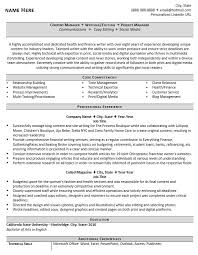 Professional Resume Writer And Editor Sample