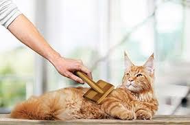 Pet Trouper Grooming Deshedding Slicker Brush NO 1 For Detangling
