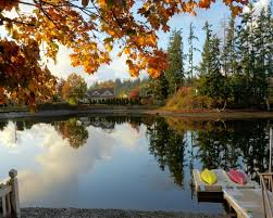 Pattersons Pumpkin Patch Gig Harbor by 29 Best Park Trails And Recreation Near Olympia Wa Images On