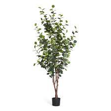 4ever green künstliche eukalyptus silber dollar eucalyptus baum im plastik topf 180 cm hoch