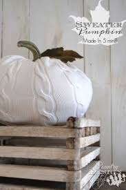 Pumpkin Patch Collins Ms by 49 Best Thanksgiving Images On Pinterest