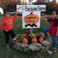 Pumpkin Picking Richmond by Home Baldwin Farm