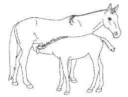 Image Of Horse Coloring Book Pages