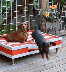 outdoor dog beds korrectkritterscom