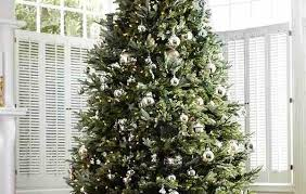Balsam Christmas Tree Care by Christmas Tree Purchase U0026 Care Guide How Does Your Garden Mow