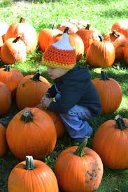 Illinois Pumpkin Patch 2015 by Favorite Pumpkin Patches In The Quad Cities U2022 Visit Quad Cities
