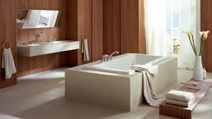 Bathtub Overflow Plate Adapter Bar by Articles With Oversized Bathtub Overflow Cover Plate Tag Splendid