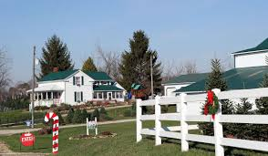 Looking For A Christmas Tree? | Life & Culture News ... Ricciardis Tree Farm A Family Tradition Since 1984 Looking For A Christmas Tree Life Culture News Pine Barn Signature Series Wound Warrior Project The Daily Record Ohio Find It Here Christmas Farms In Ohio Rainforest Islands Ferry Wooster Oh Summer 16 Pinterest Catchy Collections Of Fabulous Homes Treehouses Mohicans Rustic Wedding Venue House Will Moses Gallery Green Acres