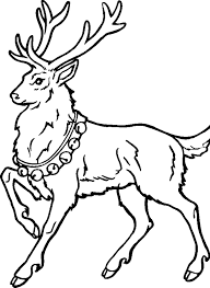 Male Reindeer In Christmas Day Coloring Pages For