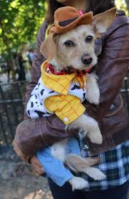Tompkins Square Park Halloween Dog Parade 2017 by 24th Annual Tompkins Square Halloween Dog Parade Photos