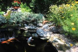 Backyard Koi Ponds And Water Gardens Are A Growing Trend Fish Pond From Tractor Or Car Tires 9 Steps With Pictures How To Build Outdoor Waterfalls Inexpensively Garden Ponds Roadkill Crossing Diy A Natural In Your Backyard Worldwide Cstruction Of Simmons Family 62007 Build Your Fish Pond Garden 6 And Waterfall Home Design Small Ideas At Univindcom Thats Look Wonderfull Landscapings Wonderful Koi Amaza Designs Peachy Ponds Exquisite