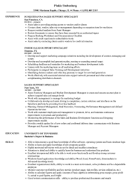 Download Sales Support Specialist Resume Sample As Image File