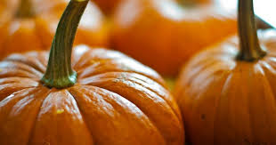 Libbys 100 Pure Pumpkin Nutritional Info by Pumpkin The Superfood U0027s Health Benefits Greatist