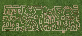 Pumpkin Patch Reno by Lazy P Farm In Winnemucca One Of 100 Farms Selected To Celebrate