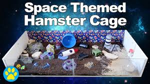 Halloween Hermit Crab Lifespan by Space Themed Hamster Cage Tour Also Includes Some Great Ideas For