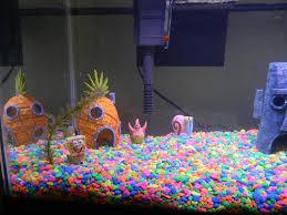 Spongebob Aquarium Decor Set by Spongebob Aquarium 01 A Photo On Flickriver
