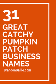 Denver Pumpkin Patch by 33 Great Catchy Pumpkin Patch Business Names