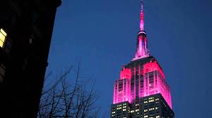 Empire State Building Lights for Valentine s Day 2014