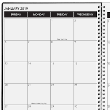 Amazoncom Delane 2019 Monthly Daily Planner Calendar