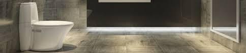 Floor Mounted Urinal Strainer by Floor Mounted Toilets Shop Floor Mount Toilets Bathroom