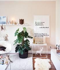 jungle im wohnzimmer monstera wohnzimmer
