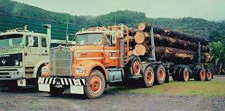 Pin By Nellie Willson On Log Life! | Pinterest | Kenworth Trucks ... Driving Kenworths Erevolving T880 Truck News Kenworth C500 Self Loading Logging Part 3 Youtube Bc Trucks 03 Peterbilt Western Star White Truck Trailer Transport Express Freight Logistic Diesel Mack Vintage Or Old Truck Pictures Pre 1970 1988 T800 For Sale 541706 Miles Spokane Semitrckn Custom T904 Loaded With Logs Road Dcp 1 64 Scale 379 Small Bunk Day Cab Opt Black W 2015 Used T909 At Wakefield Serving Burton Sa Iid 1972 Lw Aths Duncan Show Flickr Australian B Double Log Pinterest 2018 Kenworth Australia