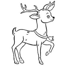 Reindeer Coloring Page A Pages Christmas