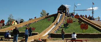 Roloff Pumpkin Patch by Top Pumpkin Patches To Visit Across The United States Landcentral