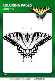 Tropical Butterfly Coloring Page Book For Adults And Children Black White Draw