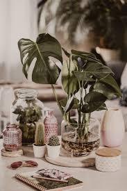 deko ideen für den frühling deko tipps fürs wohnzimmer