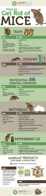 How To Get Rid Of Mice | Best Botanical Prevention | Earthkind Details Amazoncom Bonazza Mice Repellent Plugin Ultrasonic Pest The Battle Of And Men Pparedness Pro How To Get Rid Of Permanently Without Professional Help Youtube Control 1 Resource For Horse Farms Stables Riding Rats In Your Barns Stall13com Videos To Naturally Natural Rat Guide 5 Easy Steps Helpful Hints Pinterest Chicken Chick 15 Tips Rodents Around Coops Just One Bite Ii Bars And Killer8lbs8 16 Oz Bars Pet Coats Hairless Rex Harley Uerstanding Fancy Keep Other Out Your Car Engine