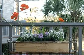 Crate Garden A Wooden Wine Makes Great Planter For Milk Ideas