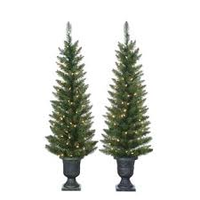 Pre Lit Palm Tree 4 Green Cedar Pine Artificial Christmas With 100 Clear White Lights Pot And Stand Set Of 2