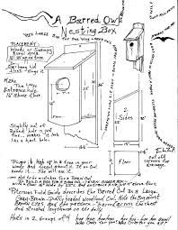 Owl Creek Gazette: For The Owlets Barn Owl Boxes And Breeding Success Nture Lakeland How To Erect A Owl Nestbox In Tree Youtube Bisham Group For Bbowt Rerves Wildlife Home Plans Audubon Field Guide House Modern Cepermans Blog Building Box Bird L Duhallow Raptor Cservation Project Ring Shows Value Boxes Attention Barn Owls Custom Bungalows Available Now Sheltons Piedmont Iniative New Hope Society Sustainability Action Alexandra District Energy Utility Adeu