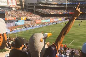 Bed Stuy Patch by Meet The Nycfc Pigeon Masked Hero Of The New York Soccer