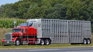 Senate Bill Would Ease HOS, ELD Demands For Ag Haulers | Transport ... Hshot Trucking Pros Cons Of The Smalltruck Niche Livestock Haulers May Receive Another Extension For Eld Rules Producers And Feedlots Are Facing A Trucker Shortage Mc Bdouble Transport Driver Jobs Australia Fleet Says It Acted Within Law In Denying Job To With Experienced Truck Fmcsa Clarifies Guidance Horse Haulers Topics Senate Passes Bill Exempting Livestock From Hinde Exports Livestock Plants Goods Ireland Uk Italy Cattle Driving Best Image Kusaboshicom Thomas Hauling Home Facebook