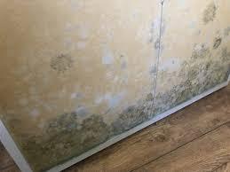 was ist die richtige luftfeuchtigkeit in wohnräumen öbuv
