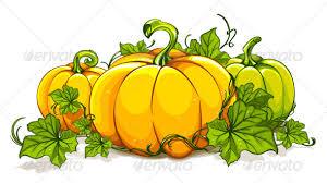 Drawn pumpkin vine 5