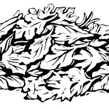 Pile Leaves Clipart Black And White ClipartFest
