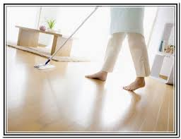 Dog Urine Wood Floors Get Smell Out by Cat Urine Hardwood Floors Sns Carpet Vidalondon