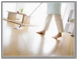 Dog Urine Odor Hardwood Floors by Cat Urine Hardwood Floors Sns Carpet Vidalondon