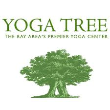 Yoga Tree San Francisco