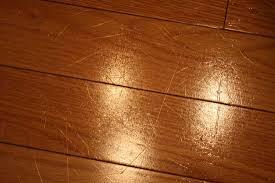 dog scratch hardwood floors fix meze blog