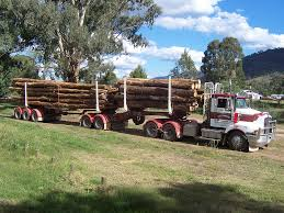 File:B Double Logging Truck In Australia.jpg - Wikimedia Commons