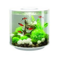 aquarium biorb 15 litres blanc mcr biorb animalerie truffaut
